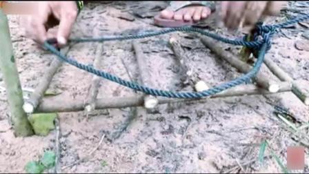 陷阱哥树林设陷阱抓捕野猪, 野猪爱吃菠萝却靠偷, 结果被抓