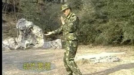 军事训练防击打技术.flv