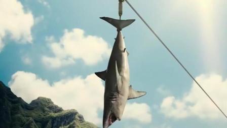 外国人真会玩, 竟拿一只鲨鱼去喂食沧龙, 太疯狂了