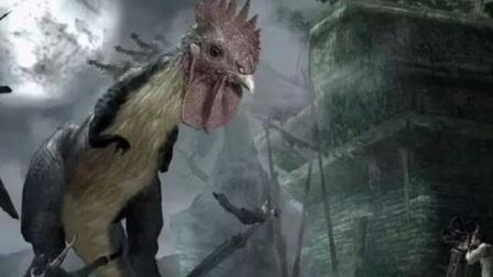你还敢吃鸡肉吗? 你是否知道鸡是谁进化而来的呢?
