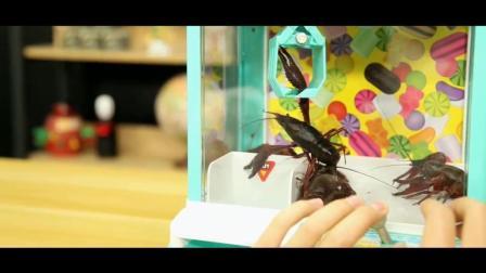 将小龙虾装进迷你抓娃娃机, 能玩出什么新花样?