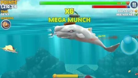 饥饿鲨进化_抹鲸鲨把天上的飞机给引入到沙滩了, 你们知道它是怎么做到的吗?