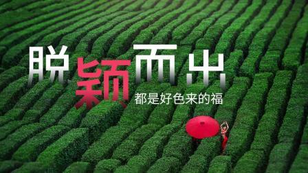 【平面设计教程】+高端色彩搭配+海报设计+设计理论+红配绿也可以小清新