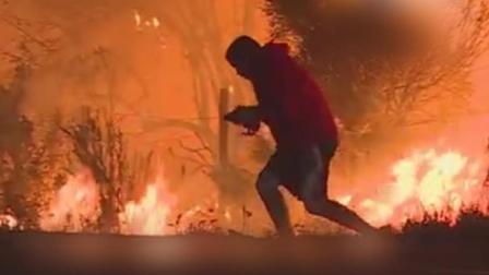 超级正能量! 男孩奋不顾身大火中救野兔, 焦急模样好暖心