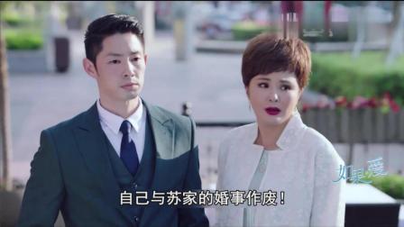 《如果, 爱》速看版第24集 李子铭承诺娶嘉妮 嘉玲与陆阳出车祸
