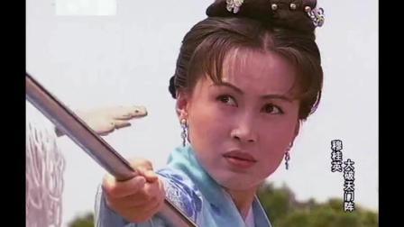 这个大辽使者不简单 杨家枪法使得比杨家将还厉害