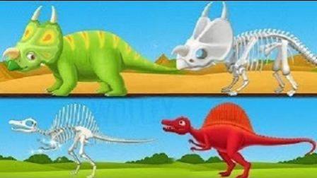 霸王龙化石 挖掘恐龙化石组装恐龙标本 动手组装 益智游戏
