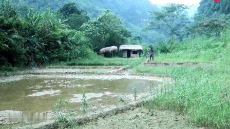 野外求生, 生存哥用粘土建造的鱼塘, 竹板做模具, 太奇葩了