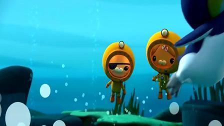 少儿动画片 企鹅妈妈们正在回到自己的家: 海底小纵队
