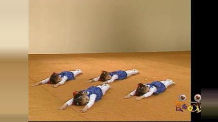 北京舞蹈学院中国舞考级全套教材第三级之04 弯腰
