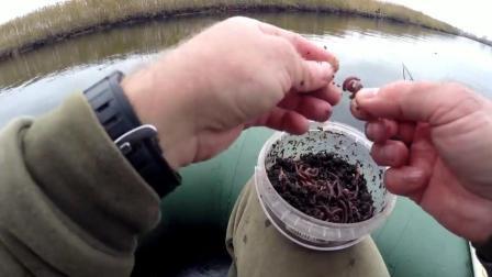 钓鱼: 民间野钓鲫鱼, 蚯蚓挂法演示