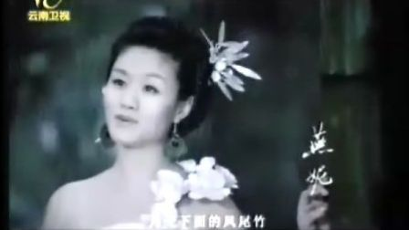 燕妮-月光下的凤尾竹(MTV)