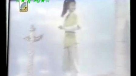 《日月神剑》(许志安)