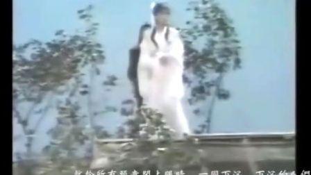 【自制MV】未改的天意——《金剑雕翎》岳小钗MV