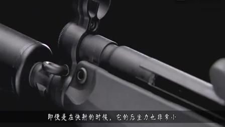 这款中国枪械, 中国骂声一片, 外国却备受好评