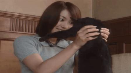 女孩帮猫包扎伤口, 黑猫为了报恩, 变成人救了女孩的一命