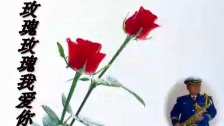 邓丽君歌曲《玫瑰玫瑰我爱你》