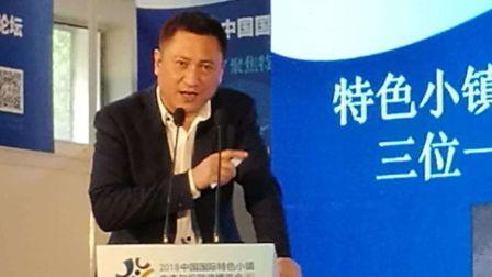 中国投资协会演讲乡村振兴特色小镇规划运营投资三位一体模式