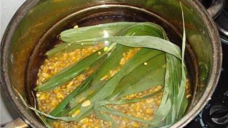 钓鱼神饵玉米粒, 究竟嫩的好还是老玉米好, 你会如何选择