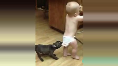 小主人快和我一起玩 求宝宝的心理阴影