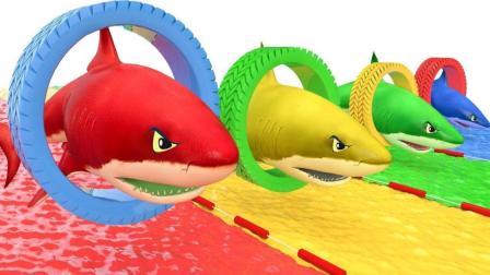 儿童学英语 婴儿鲨鱼舞蹈学习颜色彩虹汽车轮胎水滑梯童谣歌 【 俊和他的玩具们 】