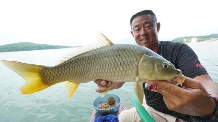 《听李说渔2》第25集 小杂鱼闹窝怎么办