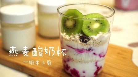 网红酸奶燕麦杯教程#美食#