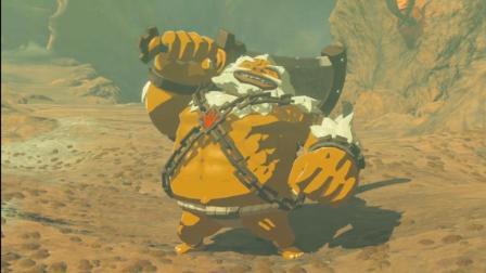 塞尔达传说 荒野之息 英杰之诗DLC 第56期 鼓隆英杰达尔克尔篇 深辰解说
