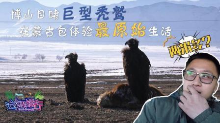 第04集: 博山目睹巨型秃鹫吃牛, 在蒙古包体验最原始生活