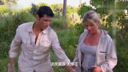 迈克夫妇偷了狮子的猎物, 一只超大的牛腿, 是肉质鲜嫩的上等牛排