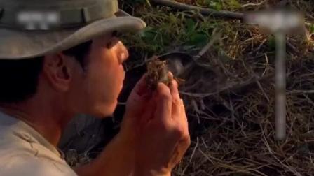 """迈克夫妇在非洲求生, 找到""""刷子树""""当火绒, 生火速度秒杀德爷"""