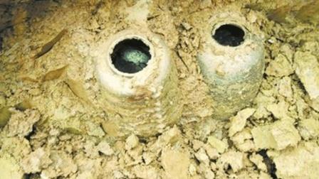 盗墓贼炸开古墓, 专家赶去发掘, 发现几百年的老鼠!