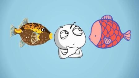 脑筋急转弯: 小明养两种鱼, 为什么红鱼比黄鱼吃的多?