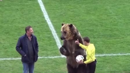 果然是战斗民族, 足球比赛连玩偶都省了, 直接上真熊!