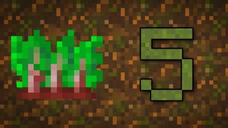 【Minecraft知多少】关于甜菜根你可能不知道的5件事