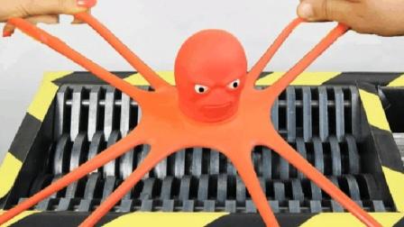 实验: 绞碎机挑战章鱼哥, 能搅碎吗?