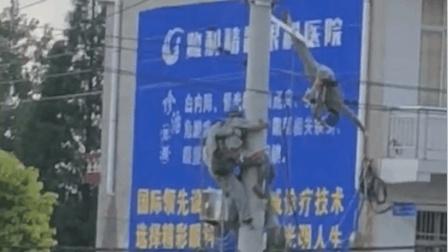 湖北荆州: 两名电工触电倒挂半空 一人不幸身亡
