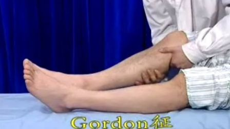 Gordon征