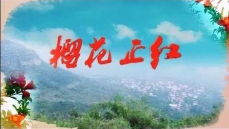大学生村官系列片:榴花正红 1