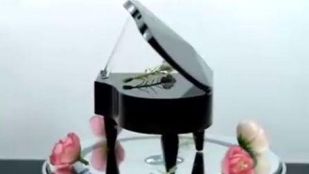生日礼物 结婚礼品 创意情人节礼物 圣诞礼物 送女 送男  水晶钢琴音乐盒mdash;mdash
