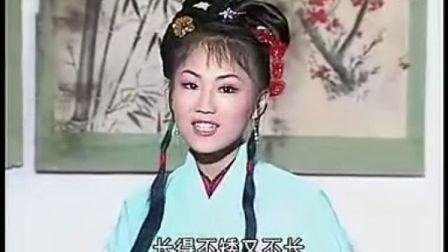 反修:安徽地方戏庐剧   绣花女传奇(全集3)