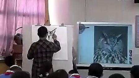A706五年级美术动物的脸人美版小学美术五年级优质课视频