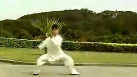 马畅陈式太极拳56式竞赛套路介绍和整套演示