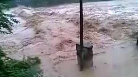 农哥实拍,汉中南郑洪灾视频,30米高大桥被淹,百年老树连根拔起
