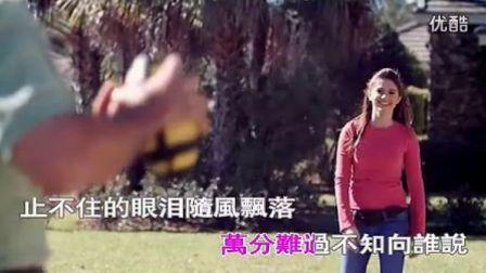 恨透你  王馨  高清MV  伤感无边