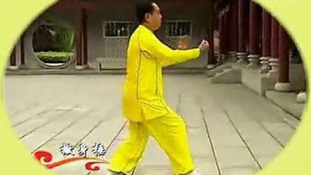 段位制杨式太极拳六段单练套路