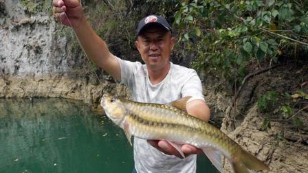 《游钓中国4》第3集 穿梭山水画卷之中 寻钓最美新光唇鱼