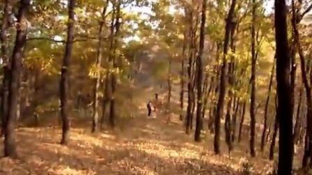 10-28绚彩的秋:三人行齐长城-药乡国家森林公园穿越3