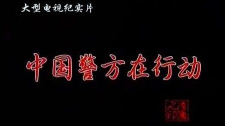 中国大案侦破纪实[第1部]第1碟