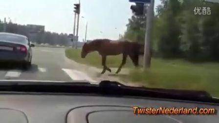无言以对  俄国(?)道路车祸第四季